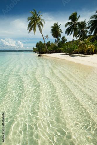 Fotobehang Tropical strand Transparent water