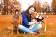Girl with dogs in the park. Autumn walk with fluffy friends.