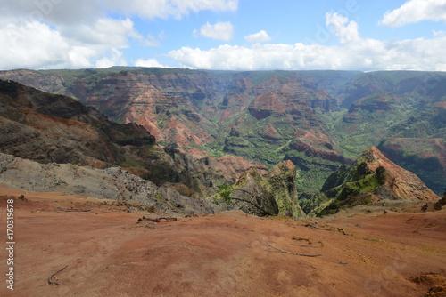 Fotobehang Cappuccino Trip to Hawaii
