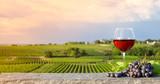 Verre de vin rouge dans les vignes - 170324228