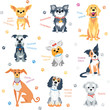 Vector set colour dogs of different breeds