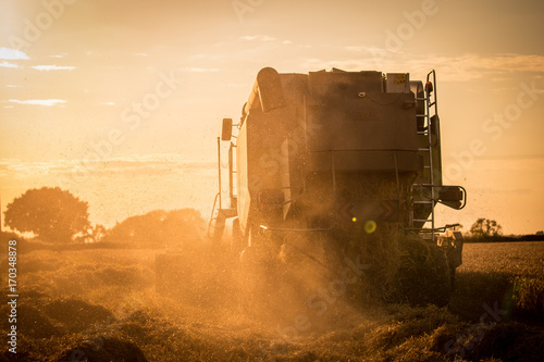 Plakat combine harvester sunset