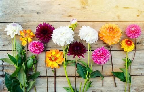 Leinwanddruck Bild Grußkarte - Dahlien Blumenstrauß