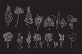 Set of tree doodles vector line on chalkboard eps10