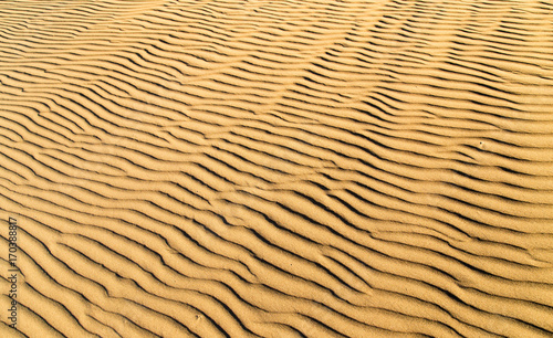 Papiers peints Beige Sand in the desert as a background
