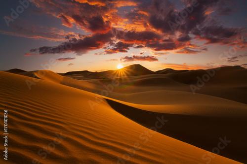 Poster Beautiful sand dunes in the Sahara desert