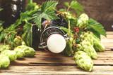 beer hop  - 170427610