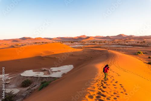 Fotobehang Diepbruine Namibia, climbing Namib desert sand dunes at sunrise