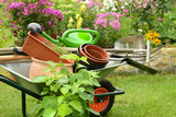 Garten 765 - 170450040