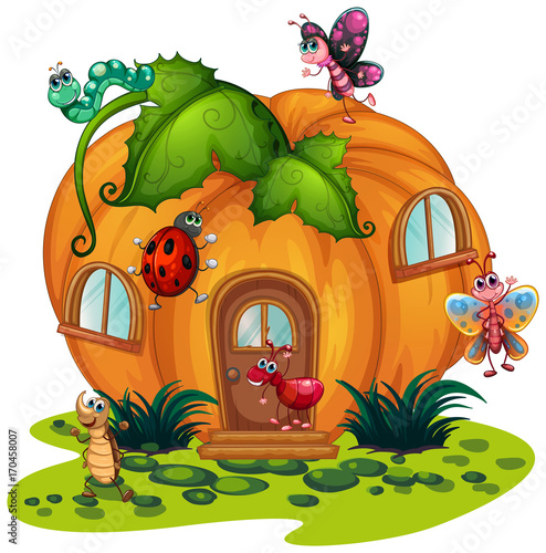 Fotobehang Kids Pumpkin house with many bugs