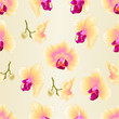 Seamless texture yellow Orchid Phalaenopsis  flower closeup  vintage  vector editable illustration hand draw