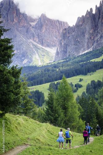 Fotobehang Pistache Italian Alps