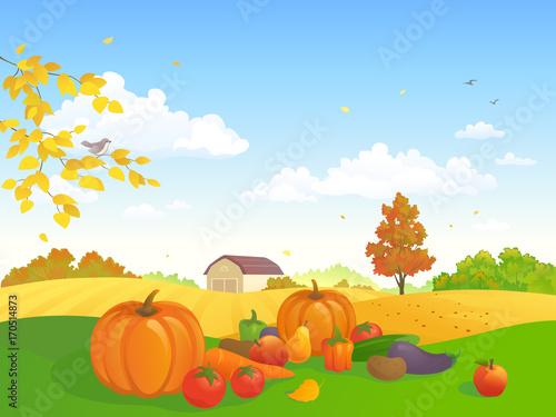 Fotobehang Boerderij Harvest festival