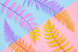 Fern Fashion. Tropical Leaf. Floral Leaves Concept. Vivid Design. Art Gallery. Creative Bright Trendy Color. Minimal Style. Summer fashion Mood