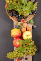 selection of autumn fruits