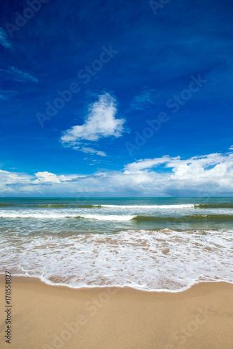 Naklejka tropical sea