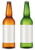 Beer bottle blank package design