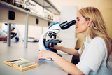Young scientist looking through microscope in laboratory - 170606250