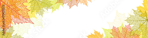 Nature banner with autumn leaves