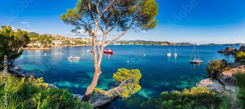 Aluminium Idyllic panorama island scenery of bay with boats at Cala Fornells on Majorca island, Spain