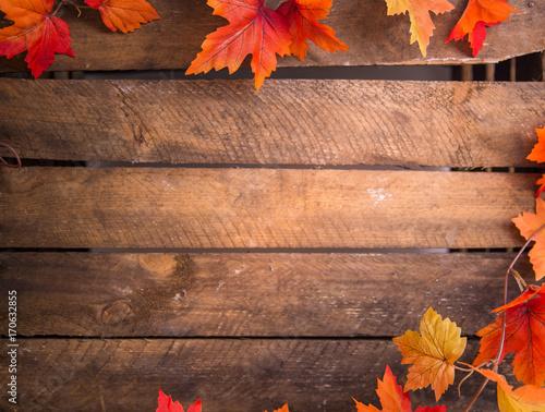 Bunte Herbstblätter - 170632855