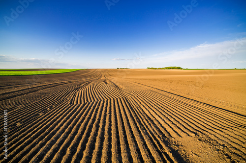 Foto Murales Agricultural landscape, arable crop field. Arable land is the land under temporary agricultural crops capable of being ploughed and used to grow crops.