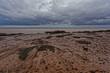 Hopewell Rocks Mud Beach