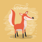 fox animal caricature in color background with lines vector illustration