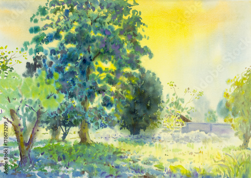 Fotobehang Geel Watercolor landscape original painting colorful of garden