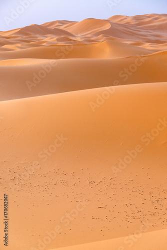 Fotobehang Marokko サハラ砂漠