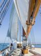 tall ship - brigatine
