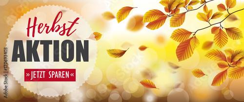 Headliner Herbstaktion mit Herbstlaub im Wind - 170693403