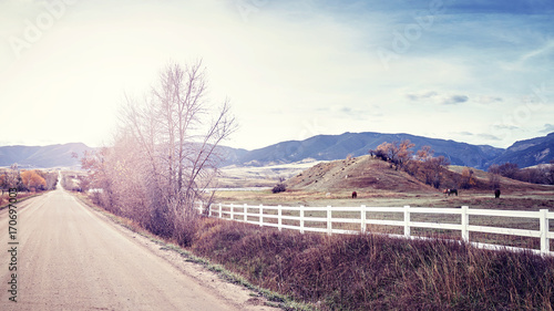 Fotobehang Wit Vintage stylized picture of s countryside peaceful landscape at sunset.
