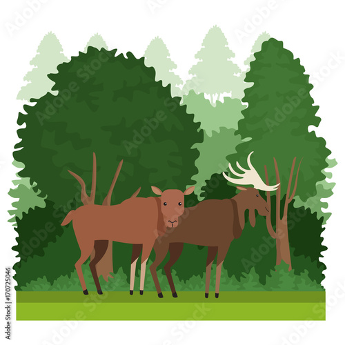 Wall mural Forest animals cartoon over white background vector illustration graphic design