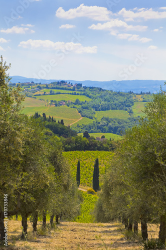 Canvas Toscane Toskana-Panorama, bei Montespertoli