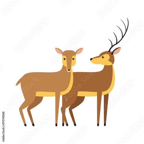 Fotobehang Zoo Deers animal cartoon icon vector illustration graphic design