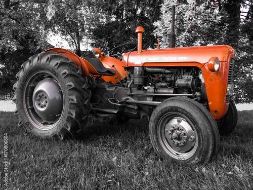 Fotobehang Trekker old tractor