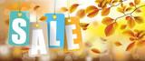 Autumn Price Stickers Sale Beech Foliage Header