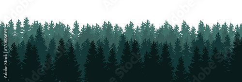 Silhouettes of trees in the forest on white background - seamless vector panorama - 170818693
