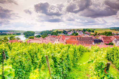 Fotobehang Lime groen View over a vineyard and the village Wipfeld