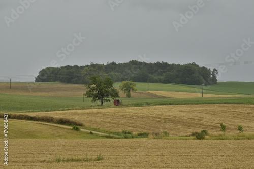 Fotobehang Donkergrijs Parcelle boisée au sommet d'une colline de champs sous un ciel de pluie près de Fontaine, au Périgord Vert