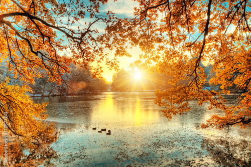Zdjęcia na płótnie, fototapety na wymiar, obrazy na ścianę : Beautiful colored trees with lake in autumn, landscape photography