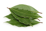 Fresh bay leaves isolated - 170881092