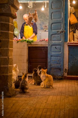 Fotobehang Marokko Essaouira, maroc