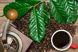 コーヒーの葉 コーヒーカップ コーヒーミル コーヒー豆 - 170916243