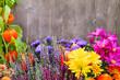 Garten -  Blumen und Holz - 170927437