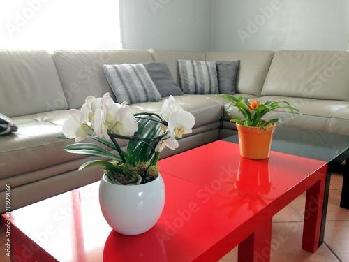 salon intérieur de maison,table et canapé moderne