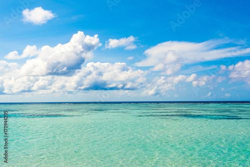 Foto op Canvas Groene koraal Beautiful landscape of clear turquoise Indian ocean, Maldives islands