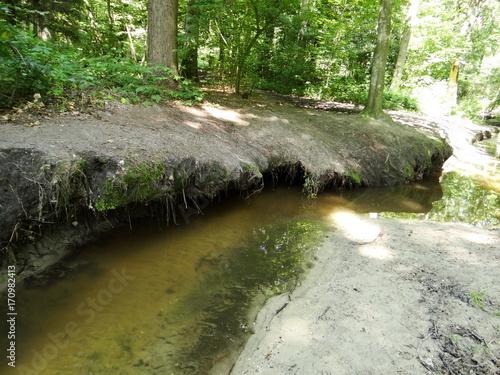 Papiers peints Rivière de la forêt Am Wasser