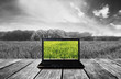 Computer laptop on wooden terrace with nature view background. Contrast colorful computer screen with black and white background. Clipping path on screen